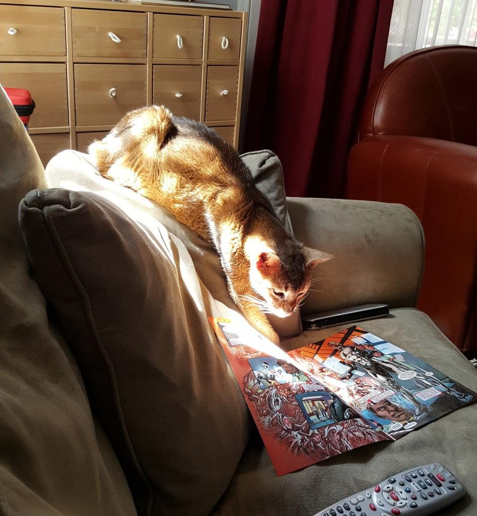 My Cat Likes Comics, Too!